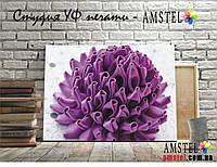 Интерьерная печать на холсте с подрамником необычный цветок (30x40)
