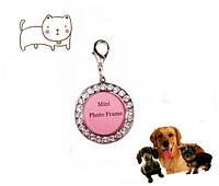 Медальон адресник - кулон подвеска для собак, котов блестящий со стразами