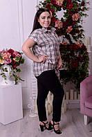 Женская блуза большого размера н-t10151301