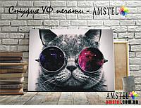 Картина Кот в очках печать на Холсте Картины