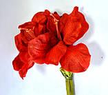Амариллис, Н 116 см, Искусственные цветы, Днепропетровск, фото 2