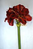 Амариллис, Н 116 см, Искусственные цветы, Днепропетровск, фото 3