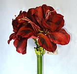 Амариллис, Н 116 см, Искусственные цветы, Днепропетровск, фото 4