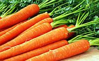 Морковь подорожала в 4 раза.