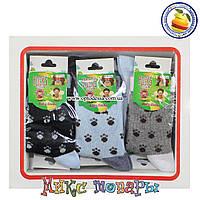 Носки в коробке для малышей Размер: 1- 2 года (12 шт в упаковке) (5278-1)