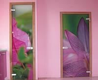 Стеклянные двери. Киев, цена, купить