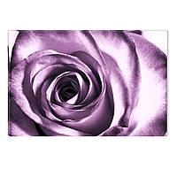 Светящиеся Картины Startonight Роза Абстракция Природа Пейзаж Печать на Холсте Декор стен Дизайн Интерьер Цвет