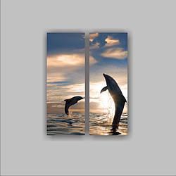 "Картина модульная ""Пара дельфинов""  (550х700 мм)  [2 модуля]"