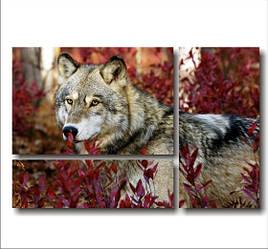"Картина модульная ""Волк в осенней листве""  (600х920 мм)  [3 модуля]"