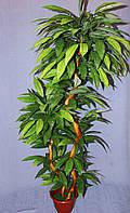 Дерево  искусственное  Манго на  2 ствола