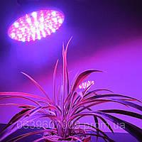 Led лампа для освещения растений мощностью 4,5 Вт Е27