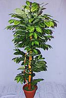 Дерево  искусственное  лесной орех 1.20 м