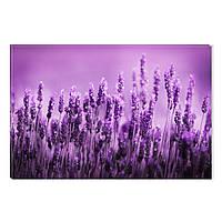 Светящиеся Картины Startonight Фиолетовое Поле Природа Пейзаж Печать на Холсте Декор стен Дизайн