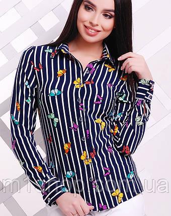 Женская блузка в полоску (1724  mrs), фото 2