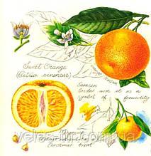 """Серветки для декупажу """"Апельсини"""" 33*33 см №369"""