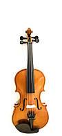 Скрипка 1/16 MAXTONE  TV1/16A LL, фото 1