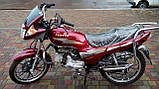 Мотоцикл VENTUS VS50QT-8 110 см3, фото 7