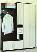 Прихожая Ривьера с распашным шкафом ШП-1