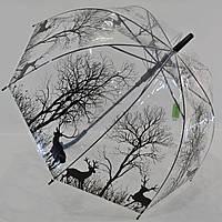 """Прозрачный зонтик трость от фирмы """"Swifts"""""""