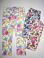 Брюки для девочек Nice Wear оптом, 98-128 pp.