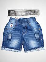Джинсовые шорты для мальчиков Nice Wear оптом,98-128 pp.