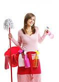 Генеральная уборка квартиры(дома) -- в компании или самостоятельно?