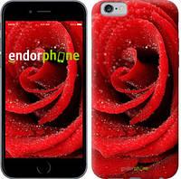 "Чехол на iPhone 6 Красная роза ""529c-45"""