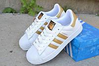 Подростковые кроссовки Adidas SuperStar White Gold 36-41