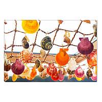 Светящиеся Картины Startonight Красочные Раковины Летний Декор Природа Печать на Холсте Дизайн Интерьер