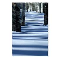 Светящиеся Картины Startonight Зима в Лесу Природа Пейзаж Печать на Холсте Декор стен Дизайн Интерьер