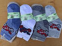 Детские носочки на мальчика сеточка 20-29 «Золото»