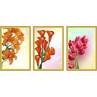 """Мультипанно """"Тюльпаны, лилии, каллы""""  (300х200 мм)  [3 модуля]"""