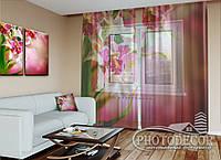 """ФотоТюль """"Пестрые орхидеи 1"""" (2,5м*1,50м, карниз 1м)"""