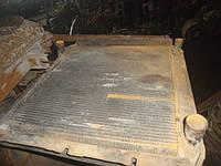Радиатор Газон, фото 1