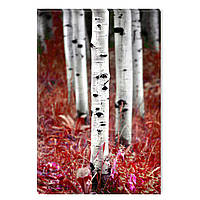 Светящиеся Картины Startonight Березы Природа Пейзаж Печать на Холсте Декор стен Дизайн Интерьер