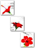 """Мультипанно """"Гибискус. Красные цветы""""  (1390х400 мм)  [3 модуля]"""