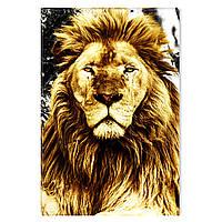 Светящиеся Картины Startonight Лев Король Зверей Мир Животных Печать на Холсте Декор Интерьер