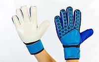 Перчатки вратарские юниорские с защитными вставками на пальцы FB-877-1 PREMIER LEAGUE (р-р 7,8, синий)