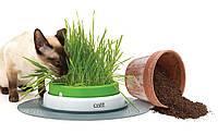 Игрушка Hagen Catit Grass Garden для кошек, 36.5х7 см, фото 1