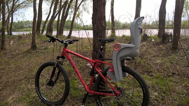 велокресло для детей