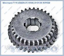 Шестерня Т-16 (СШ20.37.104 А) Z=31/36 ХЗТСШ