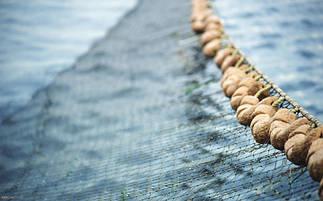 Сети для рыболовного промысла