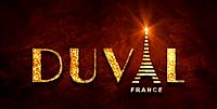 Печи из чугуна от компании DUVAL – эффективное оборудование турецкого производства