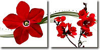 """Модульная картина """"Диптих. Красные цветы""""  (500х1040 мм)  [2 модуля]"""