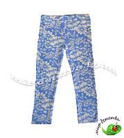 Трикотажные лосины для девочек ТМ Lovetti, Турция оптом р.3-6 лет (4 шт в ростовке)