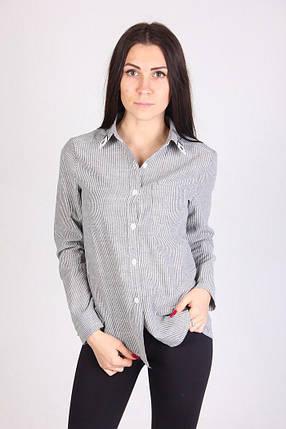 Рубашка 597, фото 2