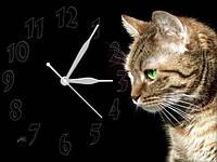 Настенные часы картина Кошка, кварцевые (30х40 см), часы для дома, часы картина