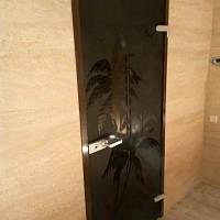 Дверь межкомнатная из бронзового стекла