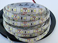 Светодиодная лента 2835 IP65 120 теплая влагозащитная