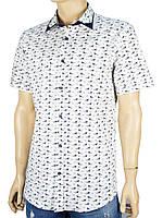 Рубашка  Jack Polo белая с принтом